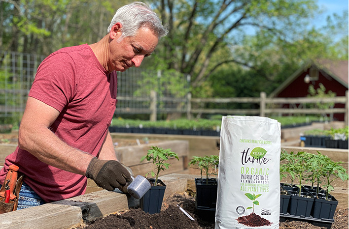 adding TerraThrive worm castings to planting holes for successful spring plants
