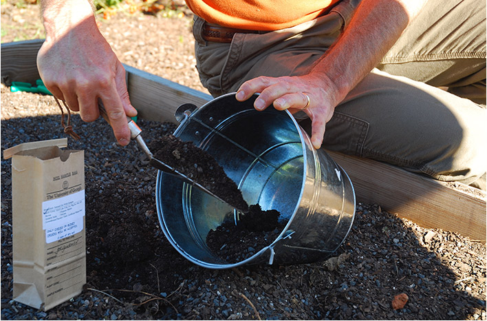Collecting soil for a soil test