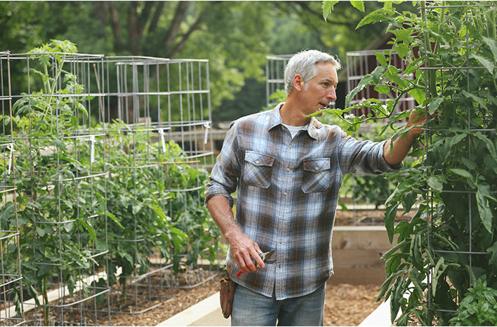 Joe Lamp'l inspecting plants to ensure summer success in the garden