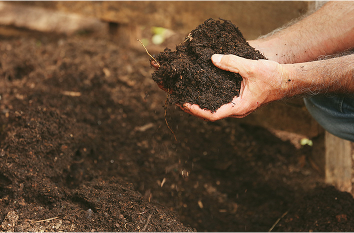 Holding a handful of soil