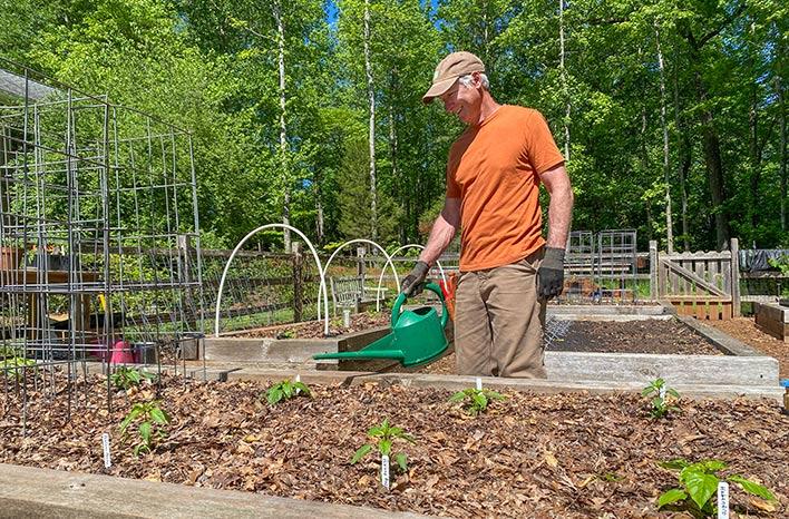 Joe watering the garden