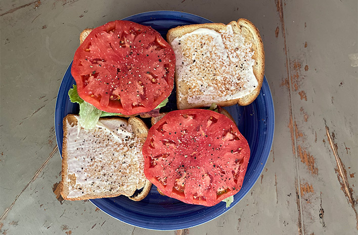 Tomatoes on a sandwich