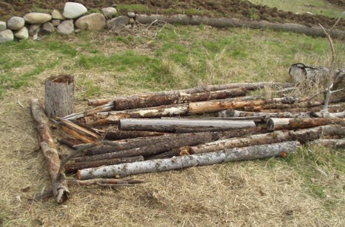 rotten wood arrangement for Hugelkultur