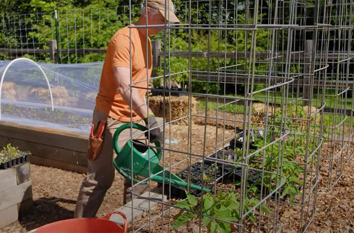 Applying liquid fertilizer