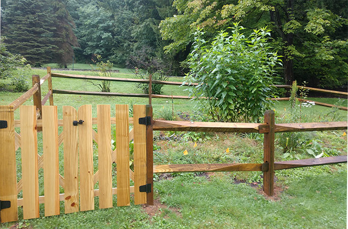 food forest with fence