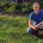 Feed Your Lawn Naturally by Topdressing with Compost