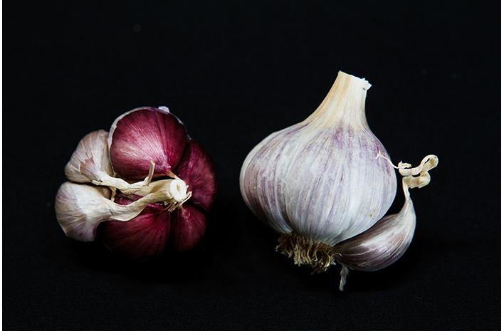 Labera purple